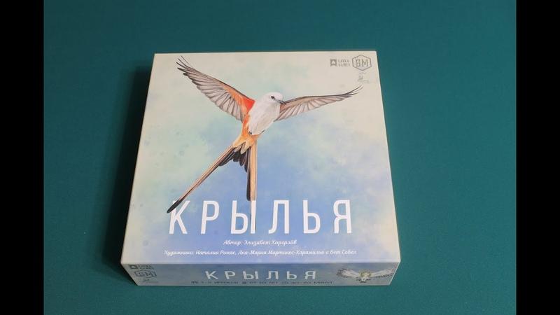 Крылья - играем вчетвером в настольную игру! Wingspan board game. Let's play.