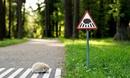 Миниатюрные дорожные знаки для крошечных жителей Вильнюса