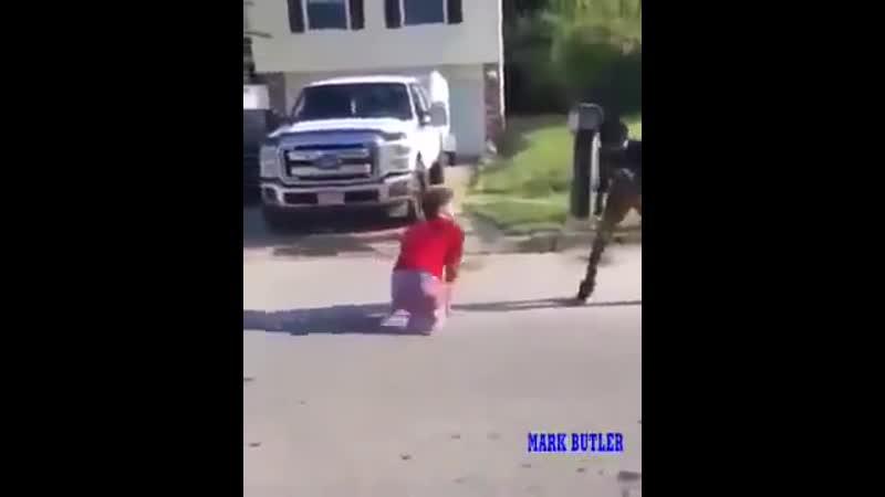 Беги нигер беги