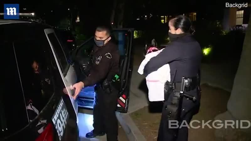 24 Февраля Любимая питомица Леди Гаги французский бульдог Эйша спасена полицией Лос Анджелесе после вчерашнего нападения