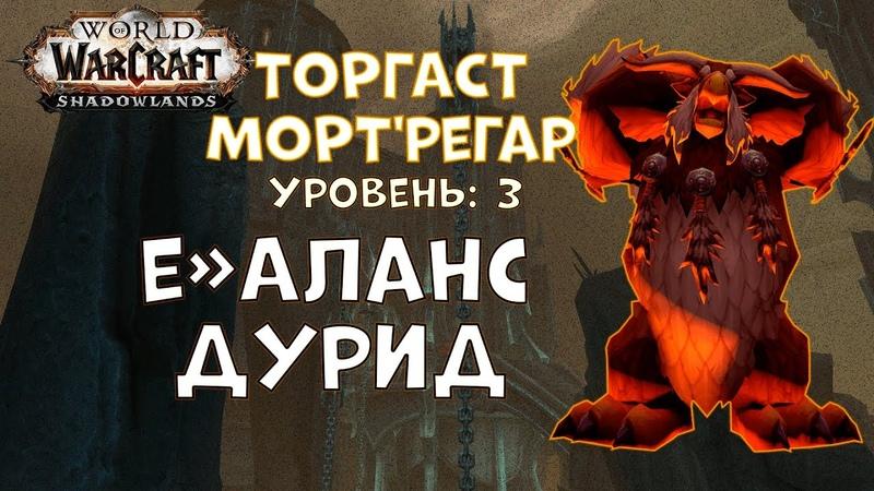 Торгаст | Мортрегар | Уровень 3 | Баланс Друид - World of Warcraft Shadowlands
