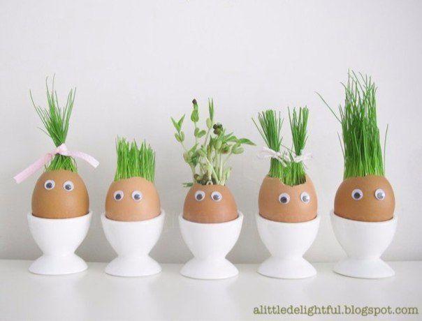 ОГОРОД В ЯИЧНЫХ СКОРЛУПКАХ Отличный эксперимент для ребёнка!Вам потребуется: -яичная скорлупа -вата -семена (подойдут любые: травы, любых злаковых культур) -вода -контейнер для яиц, либо