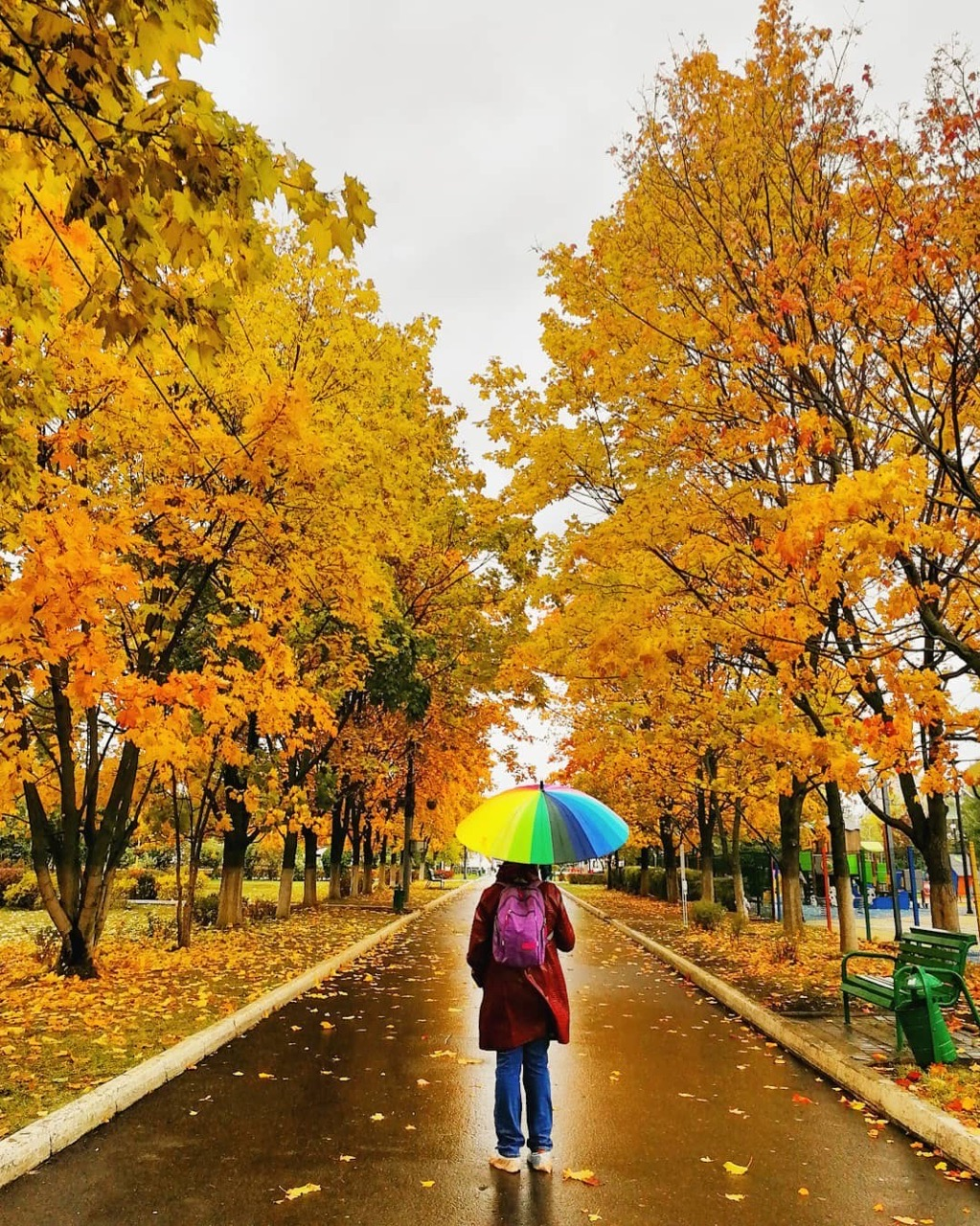 Только полюбуйтесь Одинцовскими улицами, которые объяты октябрем