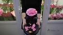 Как выглядит большая розовая роза в колбе Купить в Минске с доставкой
