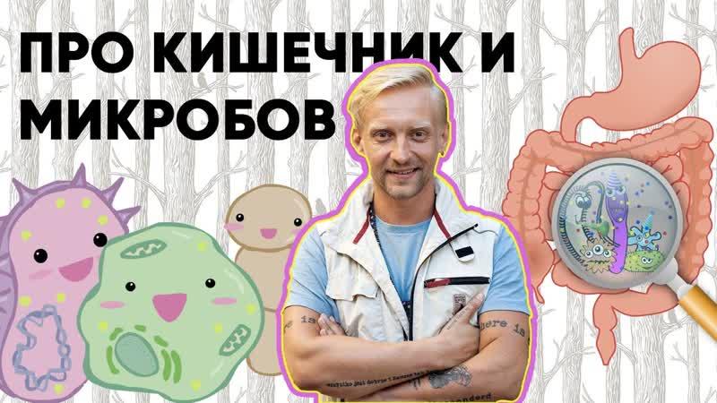 Дмитрий Алексеев Работа кишечника и микробов в нём