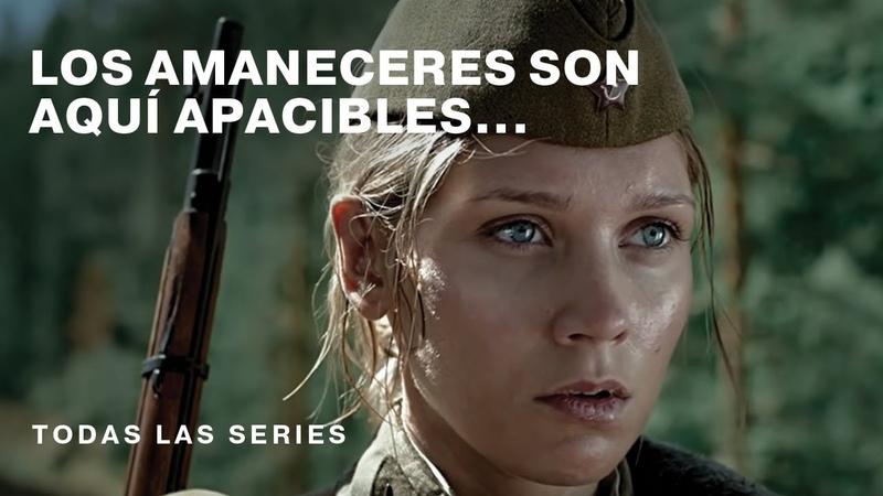 Los Amaneceres son aquí las Series Película Rusa Subtitulada RusFilmES