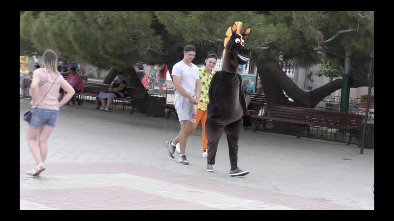 Пранк Prank Похотливая лошадь дала потрогать себя за попочку