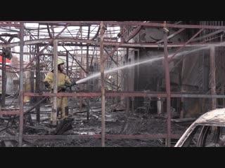 Пожар в Мурино, мусоровоз против скорой, и страшный зверь-грибник. Отдел происшествий . Невские новости