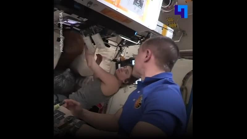И не только Земля в иллюминаторе видна астронавты устроили большую прогулку по МКС для зрителей из сети