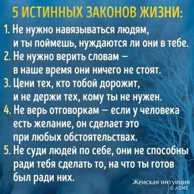 https://sun1-19.userapi.com/c7002/v7002945/64858/RA9xA5_MVEU.jpg