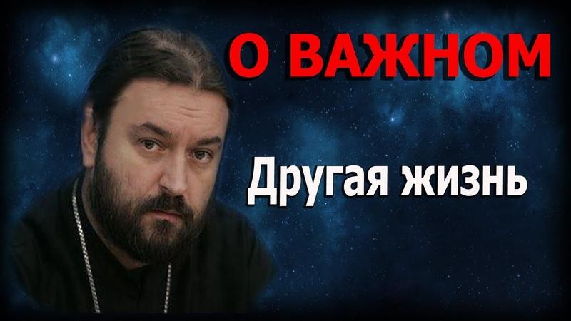 Мир в котором всех много и всем на всех наплевать Протоиерей Андрей Ткачёв