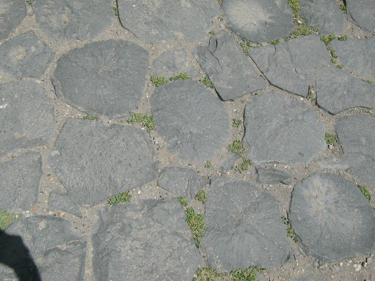 Тротуары в храме Гарни с базальтовыми столбами