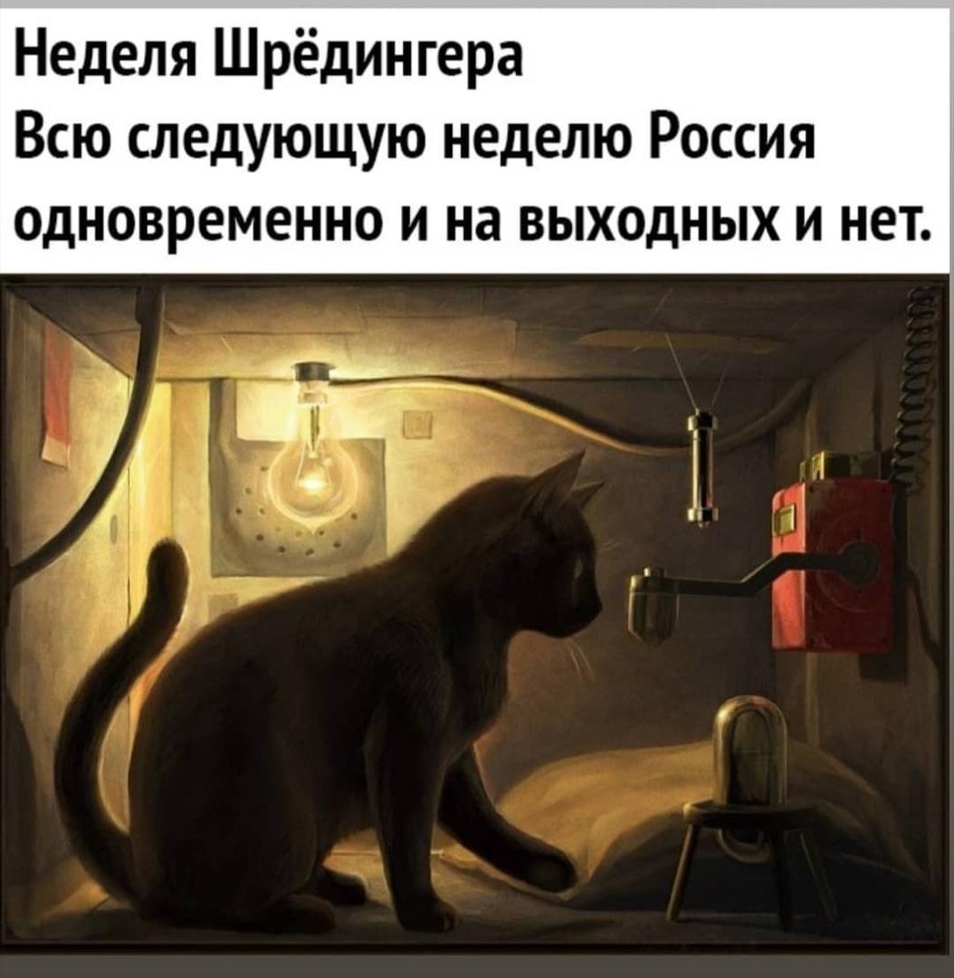 https://sun1-19.userapi.com/WiBvNnAvNl6QD0SQFtdBL2u4gQHF3uBx4j9XnA/j_XEgwvi1gw.jpg