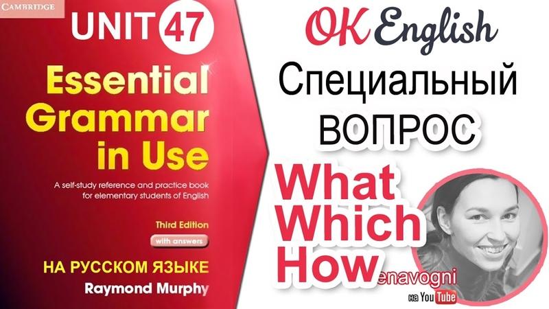 Unit 47 Вопрос с what, which, how. Специальный вопрос в английском | OK English Elementary