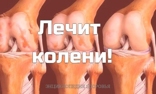 Лечит колени!