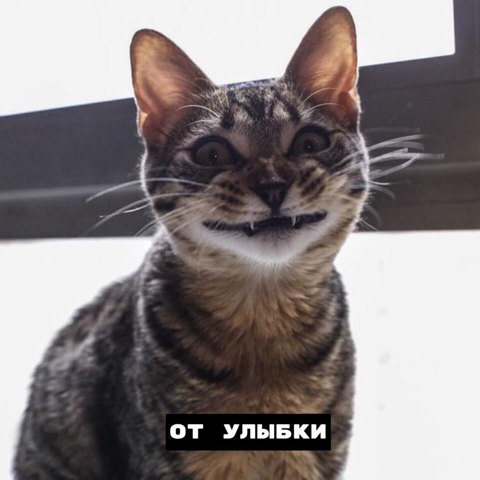 Про улыбку