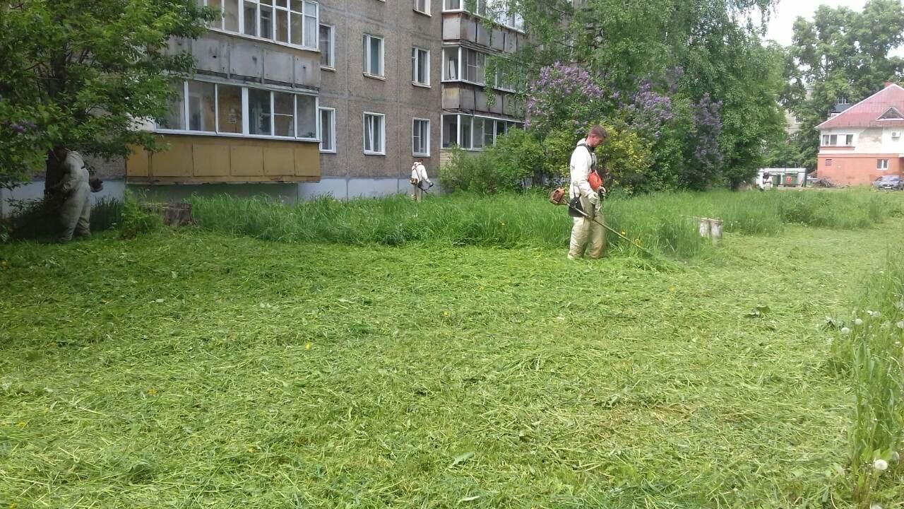 Проспект Строителей 36. Покос