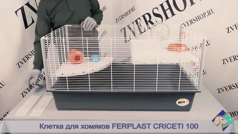 Клетка для хомяков Ferplast CRICETI 100