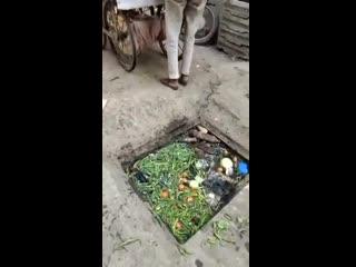 Пакистан уличный торговец тщательно моет от пыли и грязи овощи перед продажей
