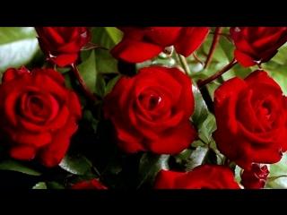 Цветы под музыку Евгений Дога из к_фМой ласковый и нежный зверь - Венский валь