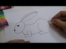 Рисуем кролика вместе! №2