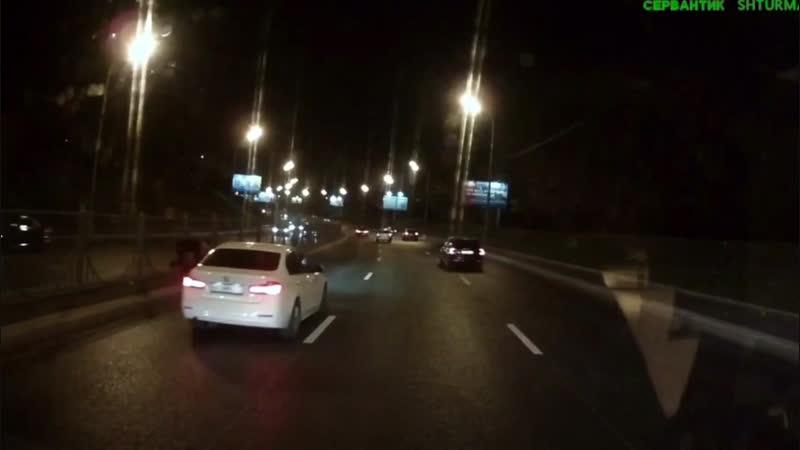 Перевёл собаку через дорогу на Ленинском проспекте