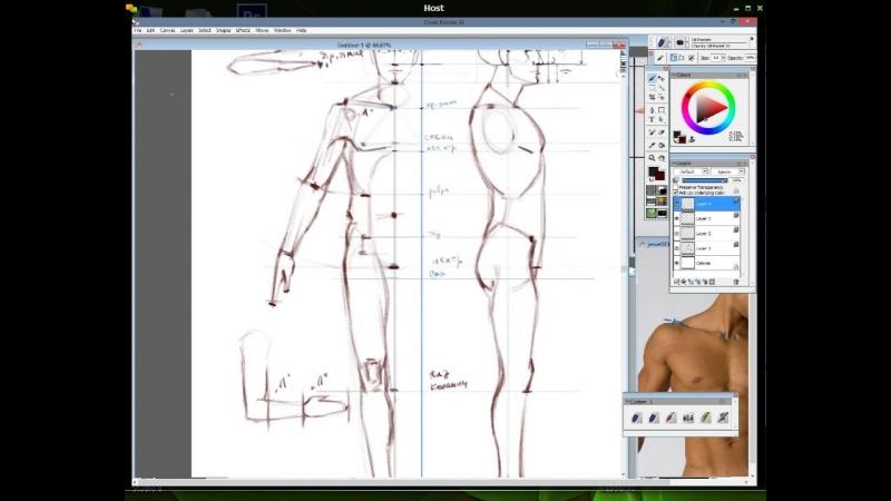 6. Пропорции тела 2