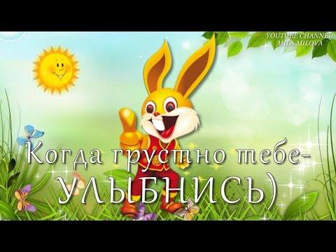 прикольн УЛЫБНИСЬ) / cool smile)