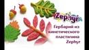 Гербарий из кинетического пластилина Zephyr
