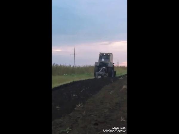 Оранка під пшеницю . Трактор юмз .