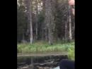 История о том, как команда подельников устроила на Сивозере охоту на рыбу 2! 🐠 🎣 ☀ 🌊 🐞🐛🐾 🌅 лето2018 осень2018 сивозеро