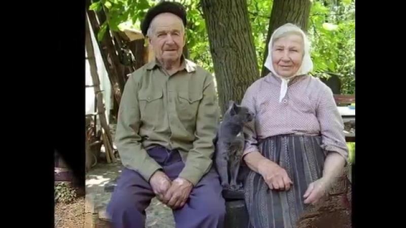 ДОМИК У ДОРОГИ МИХАИЛ ЕВДОКИМОВ
