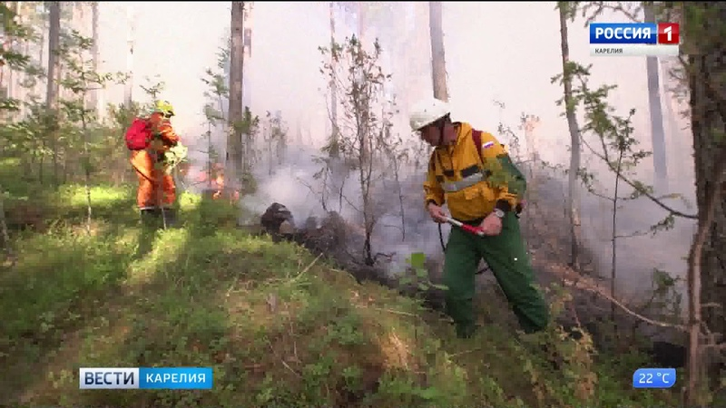 В Карелии отменен противопожарный режим повышенной готовности