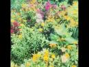Лето 2018 любимая дача💋💋💋 Природа цветы сынуля наш папа на работе но наконец то следующие выходные НАШИ