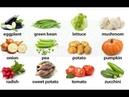 Học tiếng Anh chủ đề các loại rau củ full|Vegetable| English BoTV