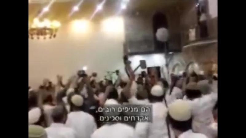 Lors d'un mariage, des extrémistes juifs les sionistes véreux ont fêté la mort d'un bébé Ali Dawabsha brûlé vif en Cisjordanie