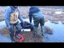 Как болото ставит нас на колени yklip scscscrp