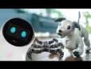 Роботы будущего на IFA 2018 очаровательный Aibo паук и шахматист
