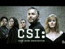 CSI Лас-Вегас s01e11-20/23 MVO