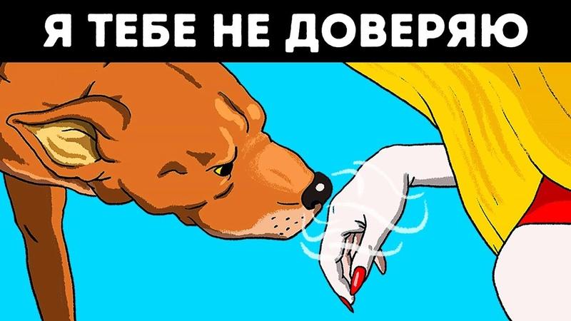 Ученые Подтвердили, Что Собаки Чуют Плохих Людей