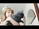 ПРИКОЛЫ 2017 Сентябрь 145 Самые Милые Видео с Животными Смешные Собаки и Кошки Про