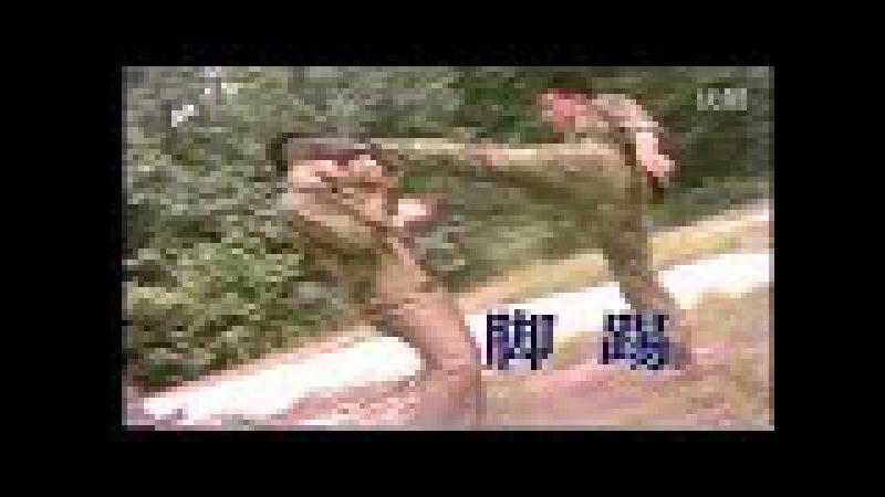 佟庆辉武术书法5Чоцзяо Тун Цинхуэй ред Игорь Февраль