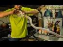 Вьетнамский шеф готовит змею эпическое видео
