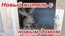 Клетка своими руками для кроликов Дешево и сердито