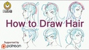How To Draw Anime Hair From Construction to Styles