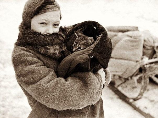 Чтобы помнили. Блокадный Ленинград. Кот Васька. Моя бабушка всегда говорила, что тяжёлую блокаду и голод и я моя мама, а я её дочь, пережила только благодаря нашему коту Ваське. Если бы не этот