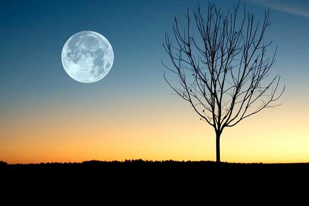 Лунный календарь на ноябрь 2019г