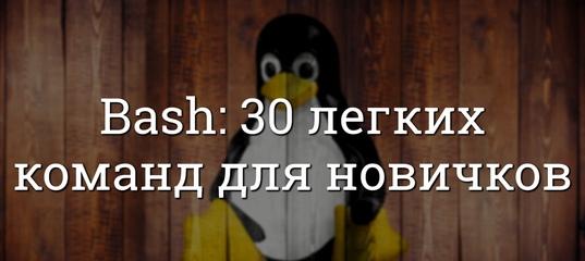 Быстрое изучение Bash: 30 легких