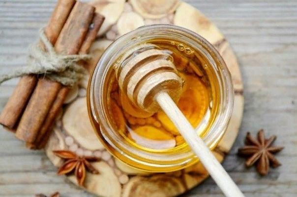 оpица и мед в помощь здоровью - 15 рецептов при различных забoлеваниях и проблемах.