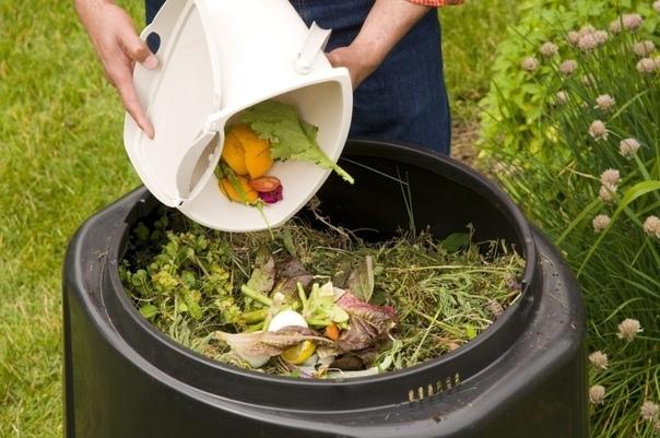 7 опасных компонентов, которые противопоказано класть в компост.